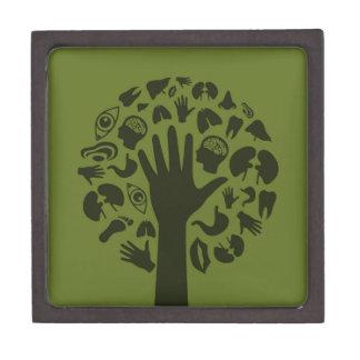 Übergeben Sie ein tree3 Kiste