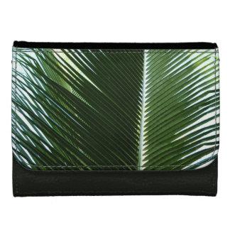 Überschneidenpalmen-Wedel-tropisches grünes