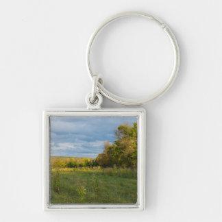 Überwucherte Herbst-Landschaft Schlüsselanhänger