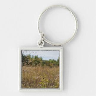 Überwuchertes Grasland Schlüsselanhänger