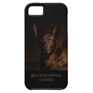 Überzogener Xoloitzcuintle Telefon-Kasten iPhone 5 Etui