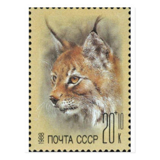 UDSSR ~ Briefmarken-Luchs Postkarte