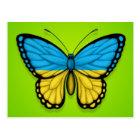 Ukrainische Schmetterlings-Flagge auf Grün Postkarte