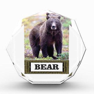 Umbaukunst des schwarzen Bären Acryl Auszeichnung