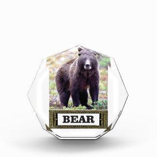 Umbaukunst des schwarzen Bären Auszeichnung