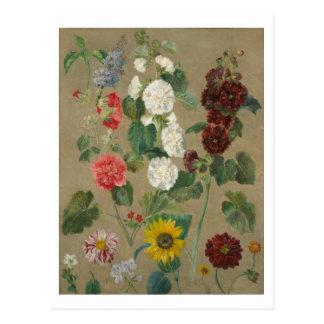 Unberechtigt (Blumen) (Öl an Bord) Postkarte