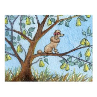 … Und ein poo-oodle in einem Birnenbaum… Postkarte
