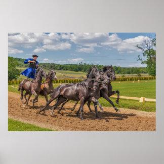 Ungarische Pferde und Reiter Poster