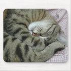 Ungeschickte Katzen-Schlafenposition Mousepad
