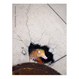 ungeschickte Mole Postkarte