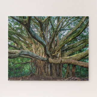 Unglaublicher Banyanbaum Puzzle