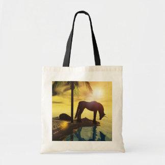 Unicorn-Taschenreflexionen Budget Stoffbeutel