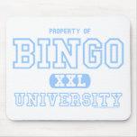 Universität der Bingo-SchülerMausunterlage Mauspad