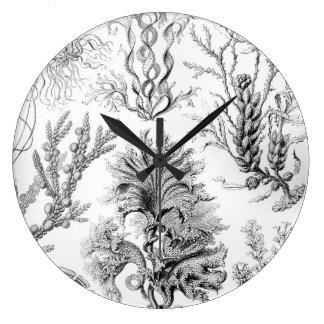Unkräuter Ernst Haeckels Fucoideae! Große Wanduhr
