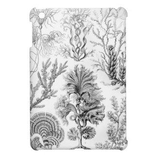 Unkräuter Ernst Haeckels Fucoideae! iPad Mini Hülle