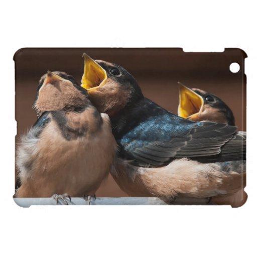 Unreife Scheunen-Schwalbe (Hirundo Rustica) Hülle Für iPad Mini