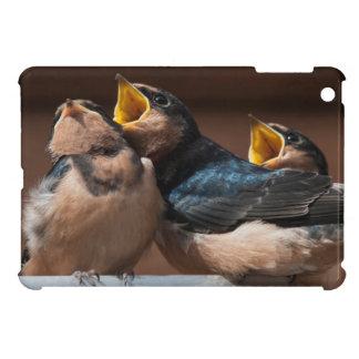 Unreife Scheunen-Schwalbe (Hirundo Rustica) iPad Mini Schale