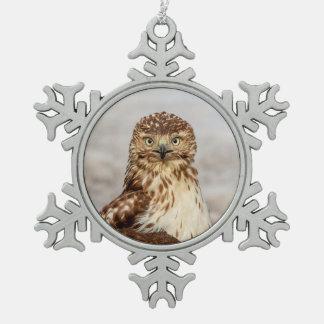 Unreifer Rot-Angebundener Falke aus den Grund Schneeflocken Zinn-Ornament