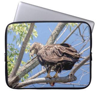 Unreifer Weißkopfseeadler mit einem Wels Laptopschutzhülle
