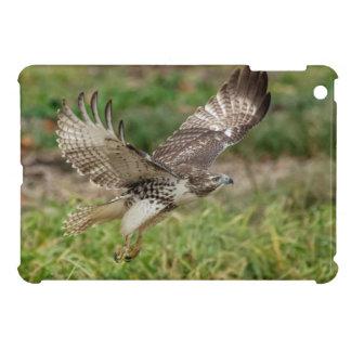 Unreifes Rot angebundener Falke iPad Mini Schale