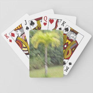 Unscharfe Palme Spielkarten hawaiischer Art