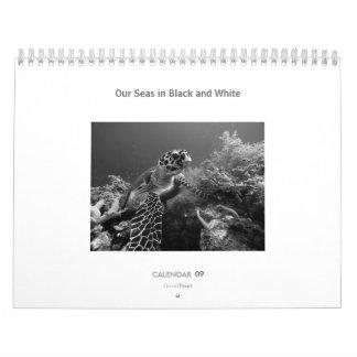 Unsere Meere in Schwarzweiss - Kalender 2009