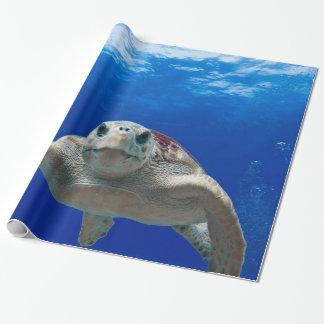 Unter der Meeresschildkröte Geschenkpapier