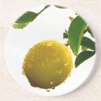Untersetzer - nasse Zitrone