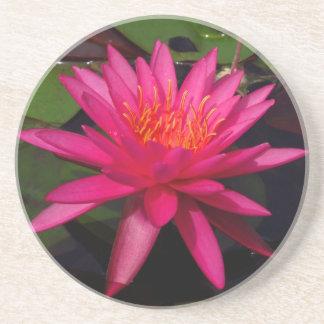 Untersetzer - rosa Wasserlilie