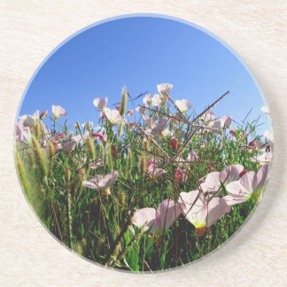 Untersetzer - Wildblumen