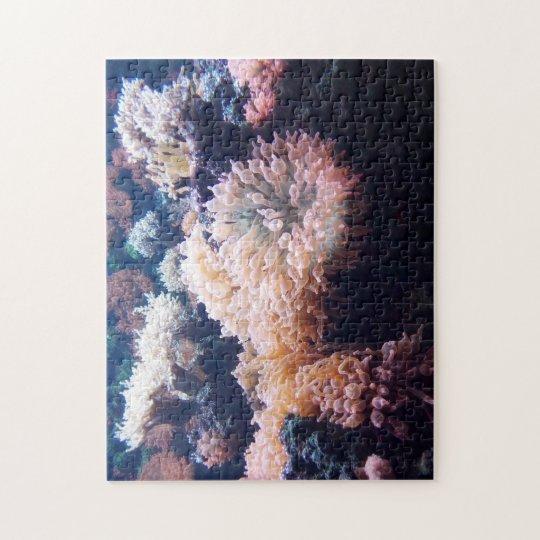 Unterwasser 28 cm x 35,6 cm Puzzle mit Geschenkbox