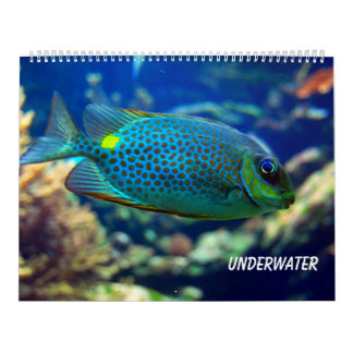 Unterwasser Abreißkalender