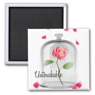 Untouchable-Rose unter Glasmagneten Quadratischer Magnet