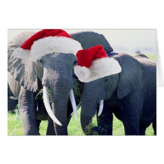 Unvergessliches Elefant-Weihnachten Karte