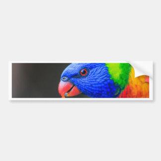Unverschämt-Regenbogen-Lorikeet-silkenphotography Autoaufkleber