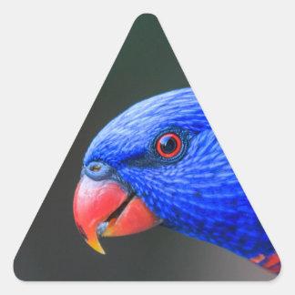 Unverschämt-Regenbogen-Lorikeet-silkenphotography Dreieckiger Aufkleber