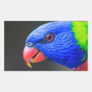 Unverschämt-Regenbogen-Lorikeet-silkenphotography Rechteckiger Aufkleber
