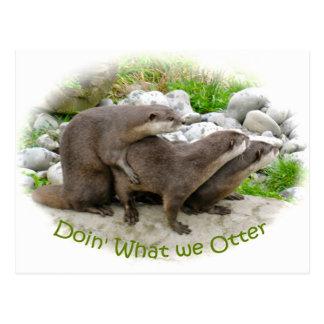Unverschämte Otter Postkarte