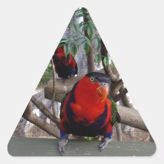 Unverschämter Gesichts-Regenbogen Lorikeet, Dreieckiger Aufkleber