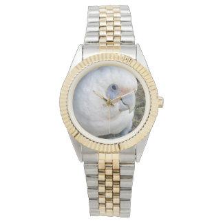 Unverschämter weißer Cockatoo, Uhr