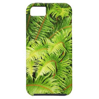 Üppiges grünes Farn-Blätter iPhone 5 Etui