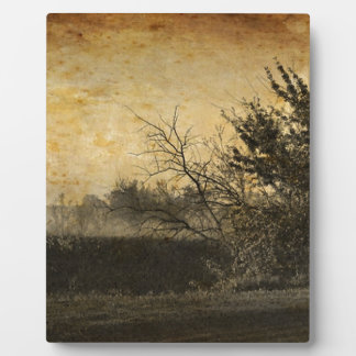 Ursprüngliche Land-Feld-Nebel-draußen Winter-Bäume Fotoplatte