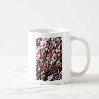 Ursprüngliches Kirschblüten-MakroFoto Tasse