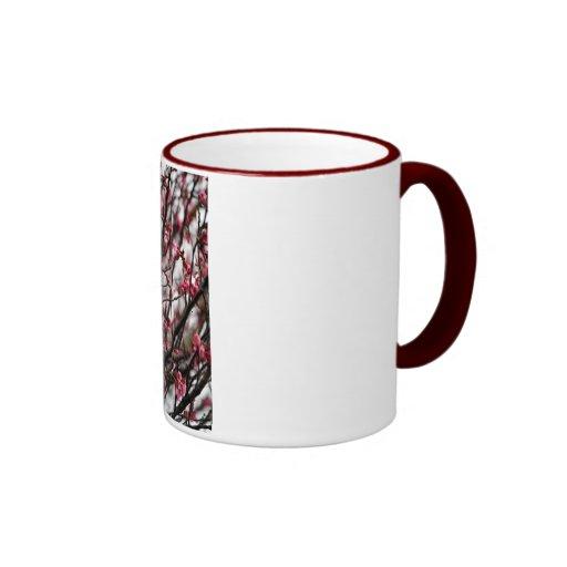 Ursprüngliches Kirschblüten-MakroFoto Teehaferl