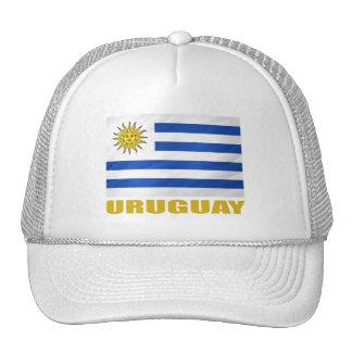 Uruguay-Flagge Netzkappen