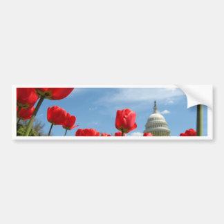 US-Hauptstadts-Gebäude-Frühlings-Foto Autoaufkleber