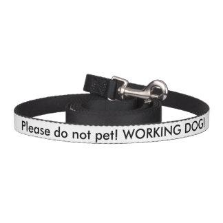 US-Veteranen-Service-Hundeführung Hundeleine