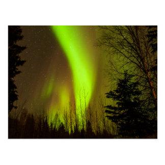 USA, Alaska, Chena heiße Quellen. Ansicht der Postkarte