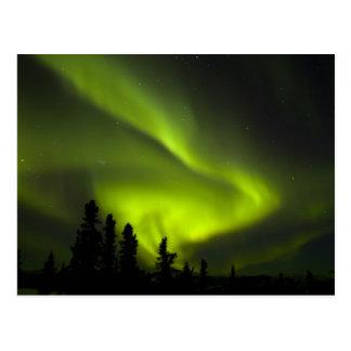 USA, Alaska, Chena heiße Quellen. Aurora Borealis Postkarte