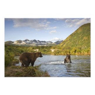 USA, Alaska, Katmai Nationalpark, Kinak Bucht, 2 Fotografische Drucke